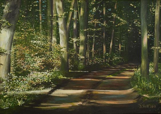 Path to Peace, 50 cm x 70 cm (Öl auf Leinwand)