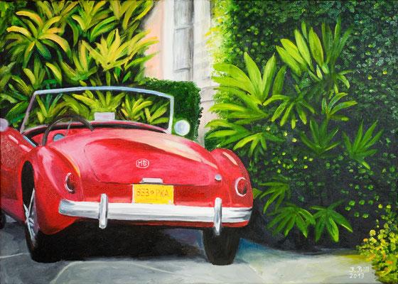 Just for fun, 50 x 70 cm (Öl auf Leinwand)