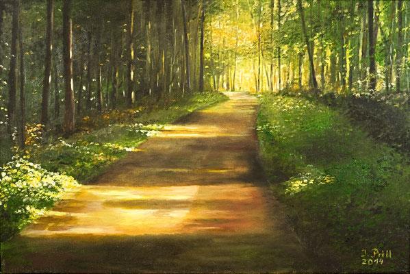 Weg ins Licht II, 60 x 40 cm (Öl auf Leinwand) (VERKAUFT)