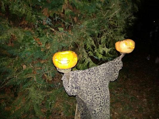La nature a été moins généreuse cette année en citrouilles. Deviendraient-elles rares !