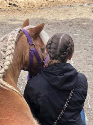 geflochtene Zöpfe für Reiter und Pferd