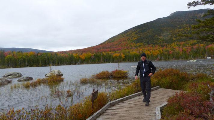 """Baxter State Park; auf der """"Moose-Suche""""; leider ohne Erfolg"""