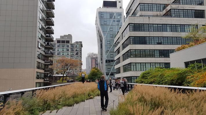 auf der High Line unterwegs