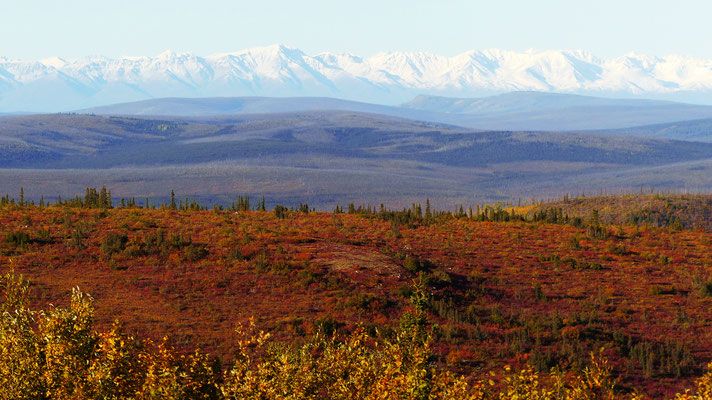 2015: view from top of the world highway, alaska (USA)