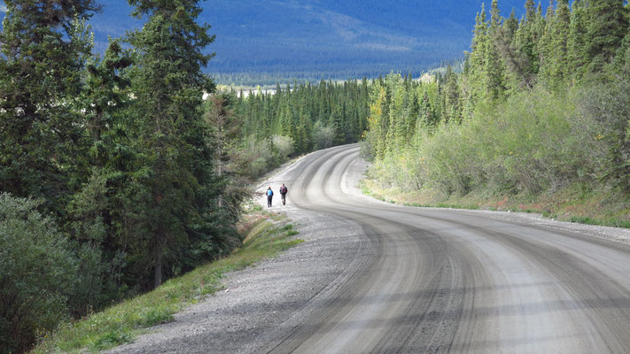 2015: Road in Denali National Park, Alaska (USA)