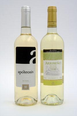 Weinflasche für das Weingut Quatro Rayas. Etikett Carlos Ibáñez,Foto und Bildbearbeitung Irene Wilhelm 05/2010