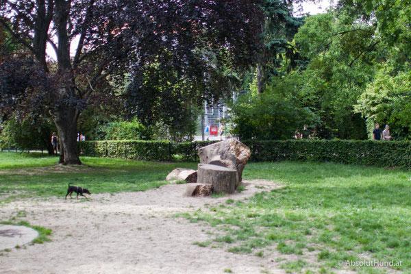 Wien Hundezone Türkenschanzpark