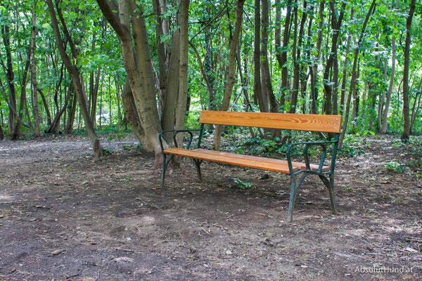 Hundezone - Herbert Mayr Park, 1230 Wien - AbsolutHund.at