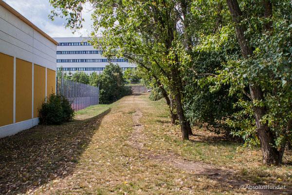 Hundezone Theophil-Hansen-Gasse 22, 1230 Wien