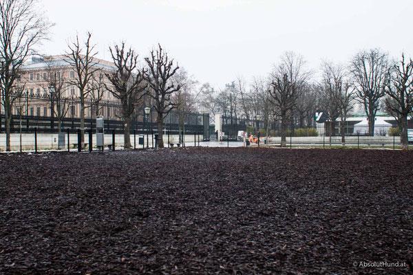 Hundezone - Heldenplatz