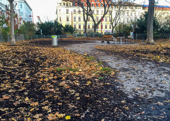 Hundezone Reithofferplatz 1150 Wien - AbsolutHund.at