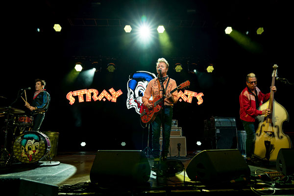Stray Cats 2019, Columbiahalle Berlin, Foto: Dirk Pagels