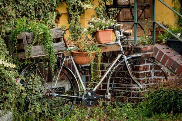 Impressionen in der Teltower Altstadt, Foto: Dirk Pagels, Teltow