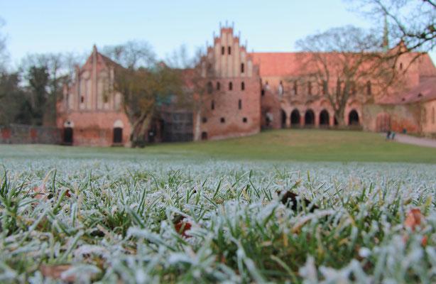 Kloster Chorin 2015, Foto: Dirk Pagels
