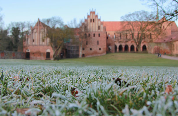 Kloster Chorin 2015, Foto: Dirk Pagels, Teltow