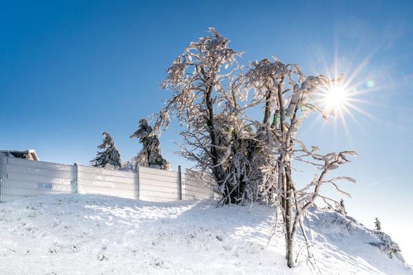 Januar 2019 auf dem Wurmberg in Braunlage, Foto: Dirk Pagels, Teltow