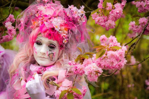 Cosplay in Teltow, Kirschblüten Allee, Kirschblüte, Foto: Dirk Pagels