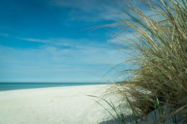 Strand Ahrenshoop Ostsee, Foto: Dirk Pagels Teltow