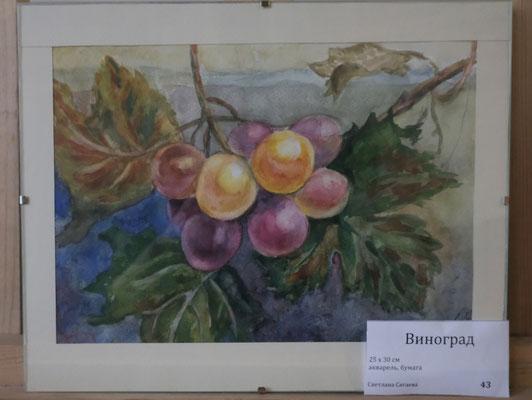Виноград - акварель, бумага, 25х30 см, художник - Светлана Сягаева (1 500 р)