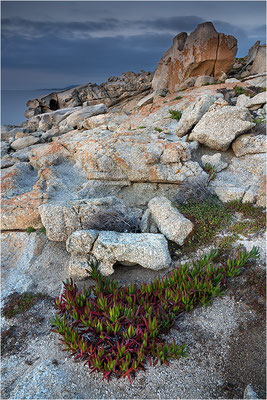 Korsika, Nordküste