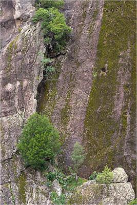 Korsika, Felswand im Nordteil