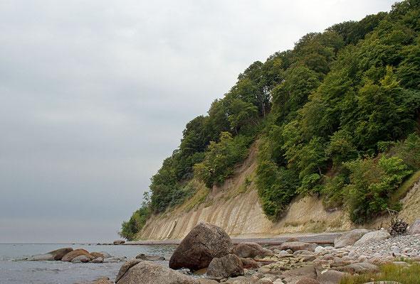 Kreidefelsen, Nationalpark Jasmund, Rügen, Mecklenburg-Vorpommern