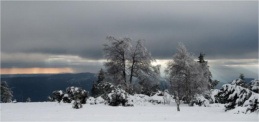 Schliffkopf, Nordschwarzwald, Baden-Württemberg, 01.12.2013