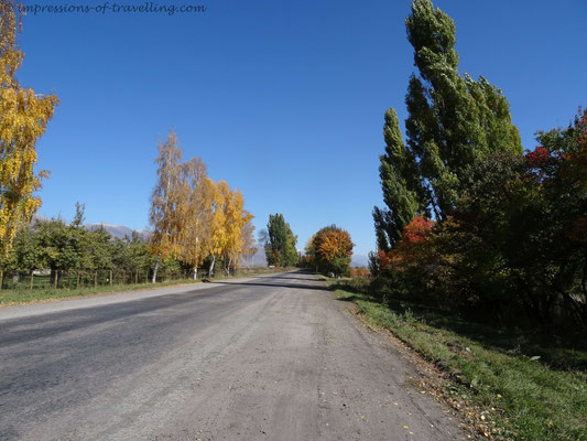 Herbstliche Farben am Issykkul-See