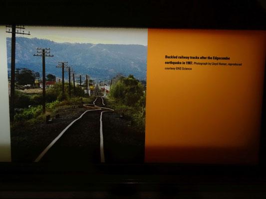 Bilder vom Erdbeben im Te Papa Museum in Wellington