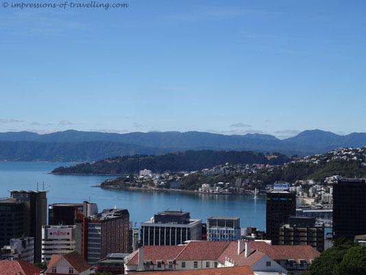 Blick auf Wellington vom Botanischen Garten