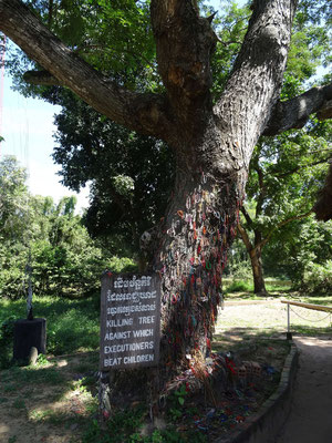 Killing Tree in Choeung Ek (Killing fields)