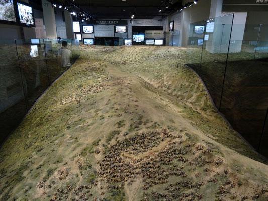 Modell von Gallipoli