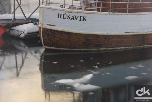 im Hafen von Husavik