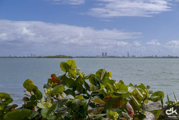 Blick auf Miami Beach von einer schön gepflegten Parkanlage in Hotelnähe