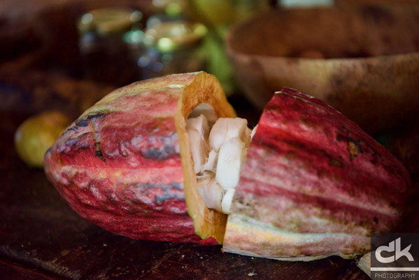 ....daraus gibts unseren feinen Schoggi: Cacao