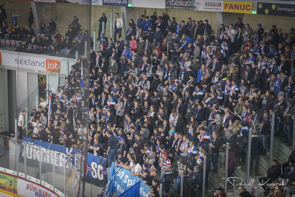 ZSC Fan Ecke