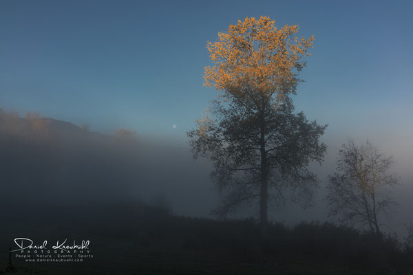 """KW46: """"sunkiss"""" - wunderschöne Herbststimmung bei Sonnenaufgang und Monduntergang in der Region Thun, aufgenommen mit meiner Sony RX1RM2"""