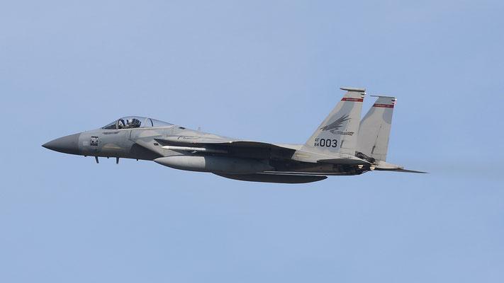 USAF F-15C 84-0003 123FS/142FW