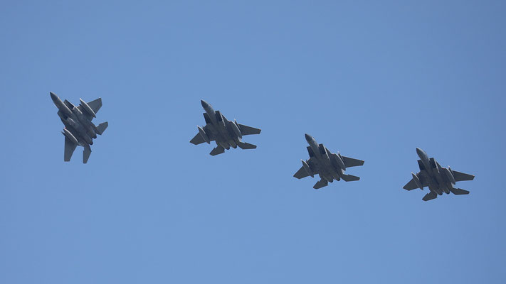"USAF F-15 ""Eagle"" 4ship formation"