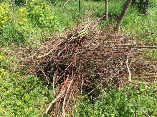 Gebündelt kann Totholz gut transportiert werden (Dagmar Schülke)