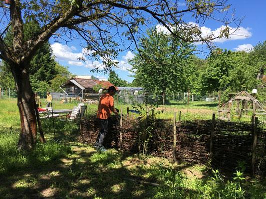Alle Zweige werden in den Totholzzaun eingeflochen (Dagmar Schülke)