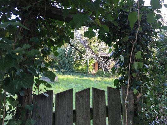 Der Blick durchs Tor verrät einen verwunschenen Garten am Grübeweg (Dagmar Schülke)