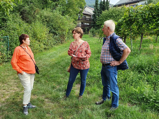 Grundstücksspekulationen erschweren den nachhaltigen Schutz des Augustenbühls (André Siepe)