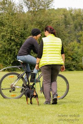 Wesenstest: Konfrontation mit Radfahrer