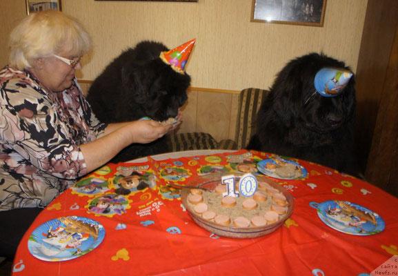 Праздничный реквизит Синди глаза закрыл, она и не заметила, что в тарелке уже тортик лежит