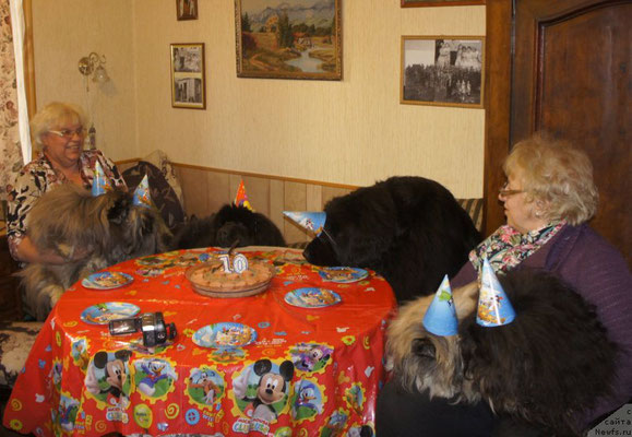 Слегка притомилась за день и решила, что пока гости рассаживаются, можно и полежать на диванчике, да и Синди СобакаЕсть 218 фотоLove Inside Your Soul Moon Bear, показала отличную выдержку рядом с тортиком:)))