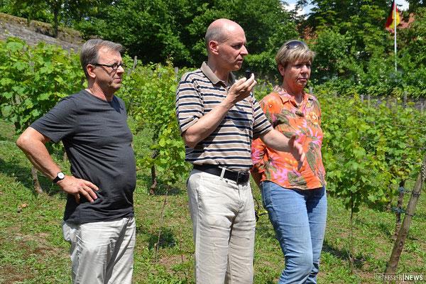 Bei der Vorstellung des Weinetiketts 2017 (von links): Heribert Burkert (Graphiker), Ralf Liebau (Kapitelältester), Barbara Hermann (Kanzlerin)