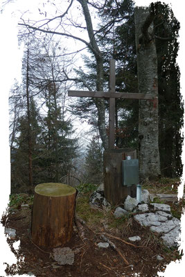 Scharnsteiner Spitze 1133m