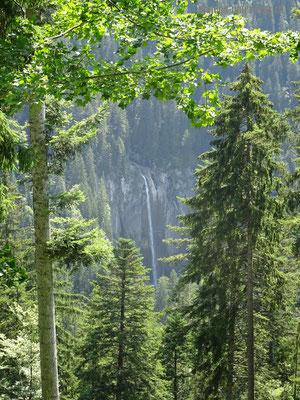 Wanderweg von Greberegg nach Suld Pochtenfall - Blick auf den imposanten Pochtenfall