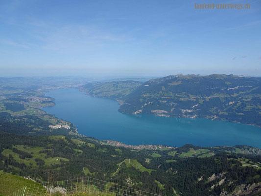 Blick vom Morgenberghorn auf den Thunersee